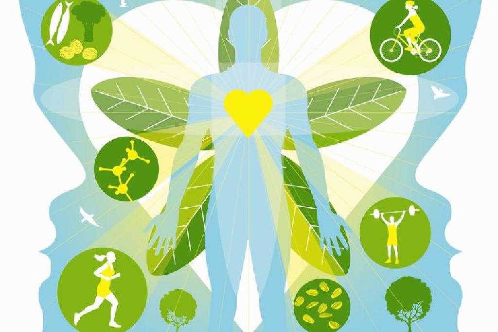 rata metabolică bazală după pierderea în greutate